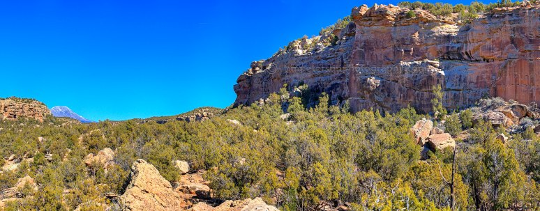 Untitled_Panorama1 copy
