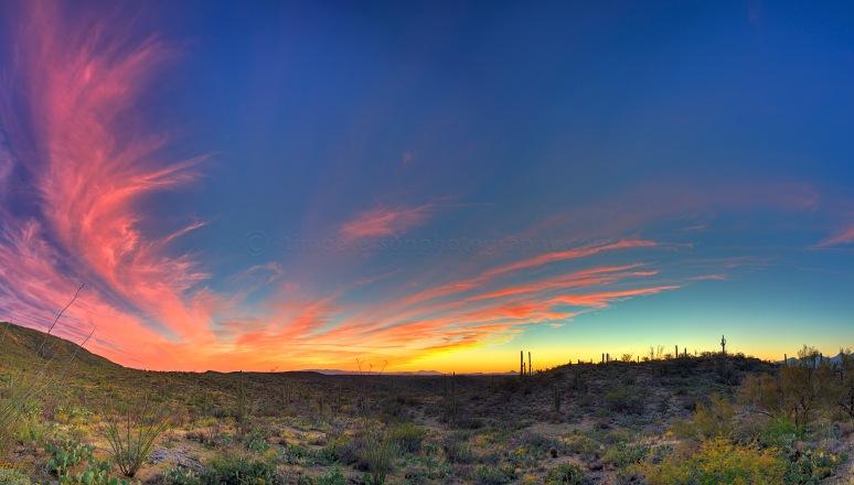 SaguaroEastSunset_Panorama copy